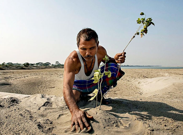 planting-trees-40-years-desolate-majuli-island-jadav-payeng-india-4-5b6a98fdc97b3__700