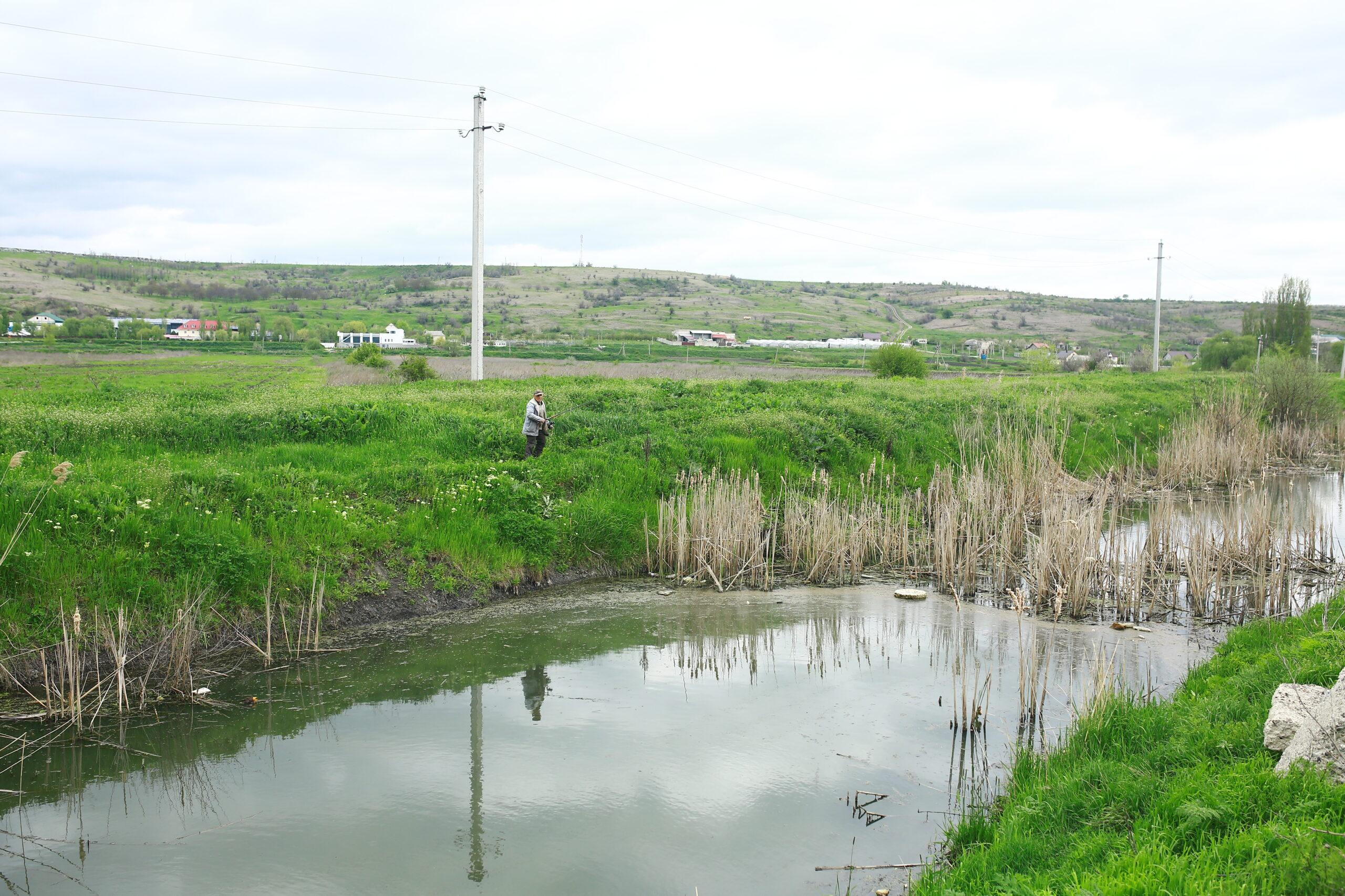 cum lasă râul rotund după tratament)